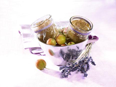 Lavendel als vielseitiges Gewürz eine kulinarische Entdeckung